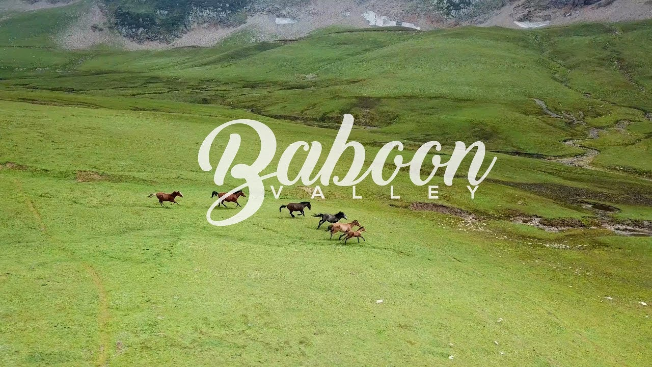 baboon valley tour packages